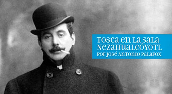 tosca_neza